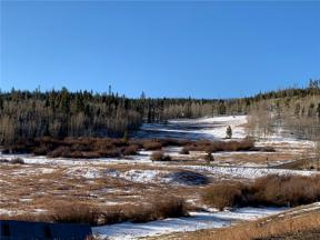 Property for sale at 1672 Ruby Road, Silverthorne,  Colorado 80498