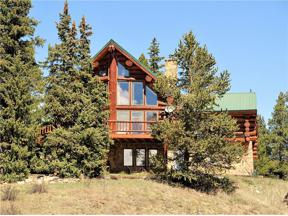 Property for sale at 428 CO RD 6, Alma,  Colorado 80420
