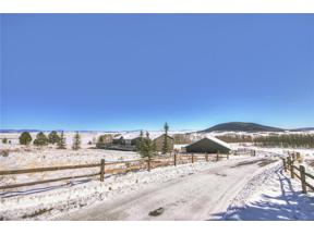 Property for sale at 1353 SHEEP RIDGE ROAD, Fairplay,  Colorado 80440