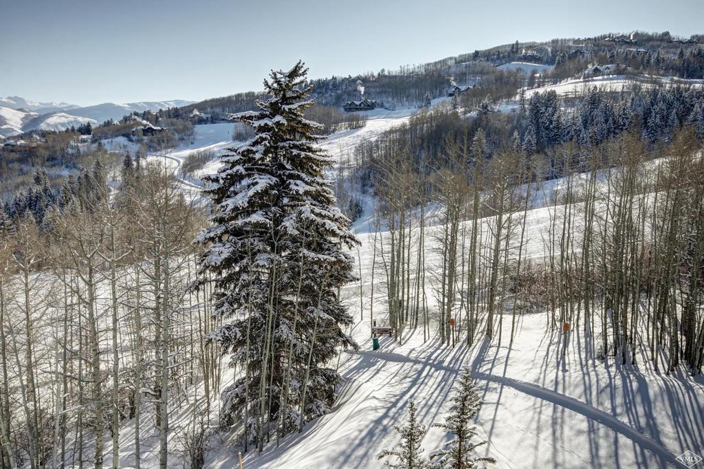 Photo of home for sale at 320 Hummingbird, Beaver Creek CO