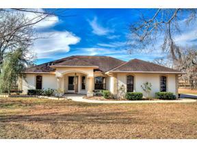 Property for sale at 12370 Se 16th Lane, Morriston,  Florida 32668