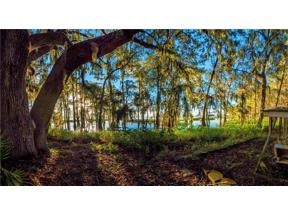 Property for sale at 00 Shadow Oak Trail, Clermont,  Florida 34711