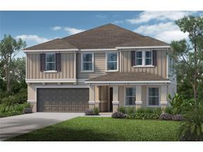 Property for sale at 5169 Malbec Court, Minneola,  Florida 34715