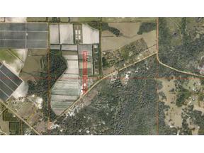 Property for sale at 4770 Saffold Road, Wimauma,  Florida 33598