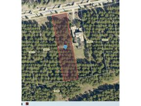 Property for sale at 15148 Pendio Drive, Montverde,  Florida 34756