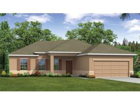 Property for sale at 15275 Aquarius Way, Mascotte,  Florida 34753