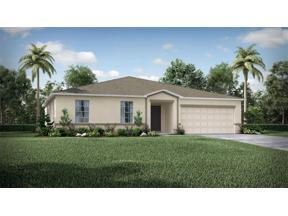 Property for sale at 15255 Aquarius Way, Mascotte,  Florida 34753