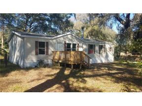 Property for sale at 28405 Se 175th Street, Umatilla,  Florida 32784