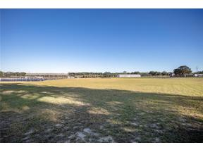 Property for sale at 17652 Sandhill Road, Winter Garden,  Florida 34787