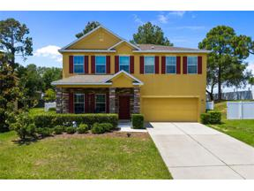 Property for sale at 1107 Mountain Fir Court, Minneola,  Florida 34715