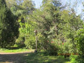 Property for sale at Off Water Road, Clermont,  Florida 34714