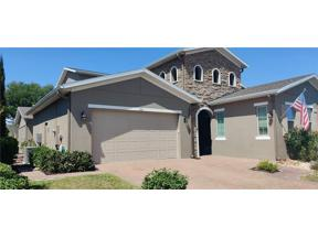 Property for sale at 235 Silver Maple Road, Groveland,  Florida 34736