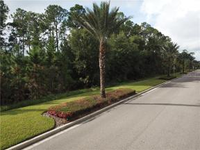 Property for sale at 17500 Grove Blossom Way, Winter Garden,  Florida 34787