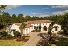 Property for sale at 15048 Pendio Drive, Montverde,  Florida 34756