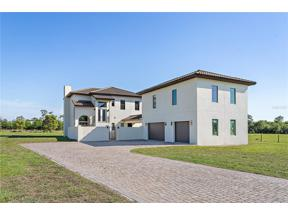 Property for sale at 17215 Heartwood Loop, Winter Garden,  Florida 34787