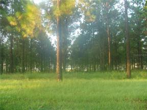 Property for sale at 16736 Artimino Loop, Montverde,  Florida 34756