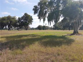 Property for sale at 1193 Youth Camp Road, Groveland,  Florida 34736