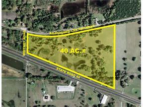Property for sale at 1315 Sr 44, Leesburg,  Florida 34748