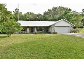 Property for sale at 22051 Nw 87th Avenue Road, Micanopy,  Florida 32667