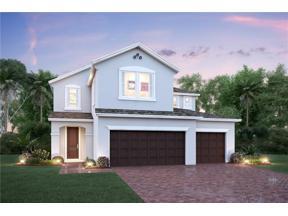 Property for sale at 601 Big Pine Avenue, Minneola,  Florida 34715
