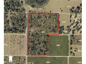 Property for sale at Gospel Hill & Number 2 Road, Leesburg,  Florida 34748