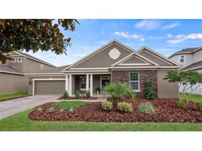 Property for sale at 571 Blue Cypress Drive, Groveland,  Florida 34736