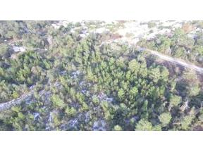 Property for sale at 11920 Holland Drive, Leesburg,  Florida 34788