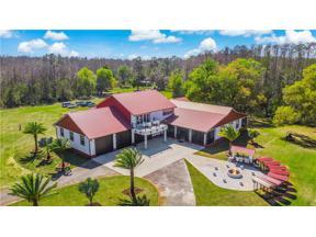 Property for sale at 8515 Bay Lake Road, Groveland,  Florida 34736
