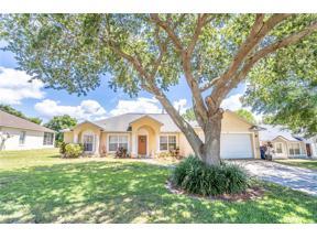 Property for sale at 1004 Chateau Circle, Minneola,  Florida 34715