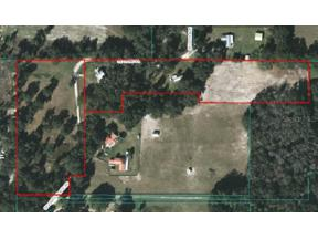 Property for sale at 6870 Se 144th Place Road, Summerfield,  Florida 34491