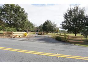 Property for sale at 14310 Bay Lake Road, Groveland,  Florida 3