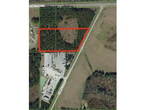 Property for sale at 11133 Ehren Cutoff, Land O Lakes,  Florida 34639