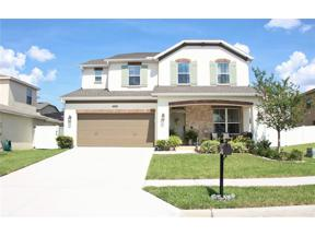 Property for sale at 4019 Canella Ct, Minneola,  Florida 34715
