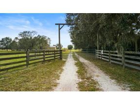 Property for sale at 33720 Singletary Road, Myakka City,  Florida 34251