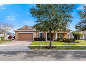 Property for sale at 369 Salt Marsh Lane, Groveland,  Florida 34736