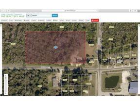 Property for sale at Parkwood Street, Groveland,  Florida 34736
