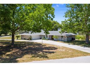 Property for sale at 16111 Ridgewood Avenue, Montverde,  Florida 34756
