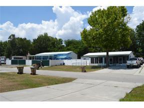 Property for sale at 16905 Sugar Berry Lane, Montverde,  Florida 34756