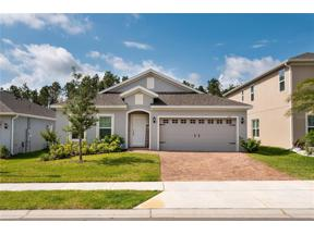 Property for sale at 1132 Cavender Creek Road, Minneola,  Florida 34715