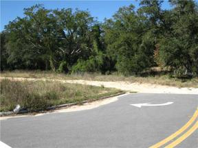 Property for sale at 13119 Hook Street, Clermont,  Florida 34711