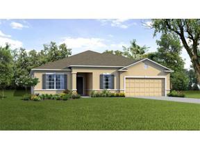 Property for sale at 15267 Aquarius Way, Mascotte,  Florida 34753
