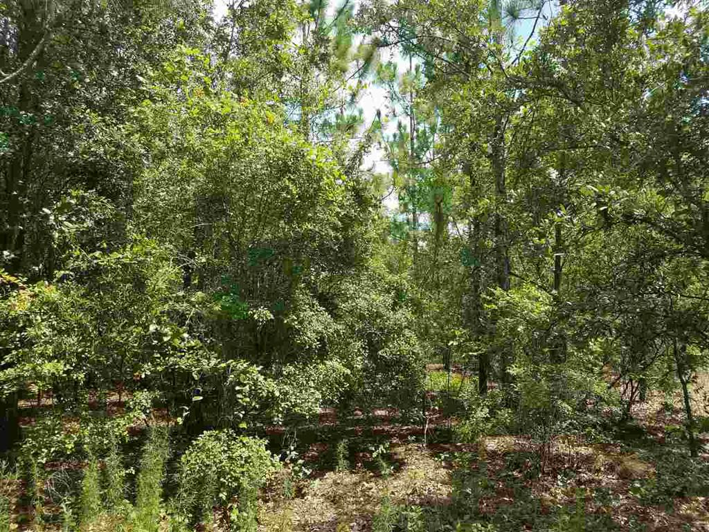 Photo of home for sale in Lee FL