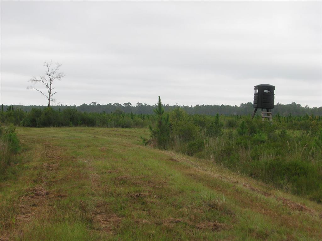 Photo of home for sale in Wakulla FL