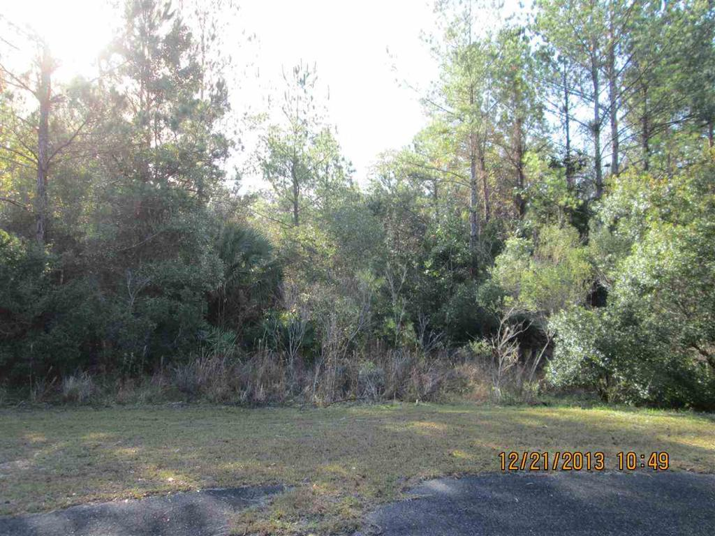 Photo of home for sale in St Marks FL