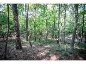 Property for sale at 000 Euharlee Road, Cartersville,  Georgia 30120