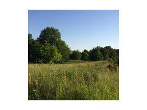 Property for sale at 0 Carlton Drive, Rockmart,  Georgia 30153