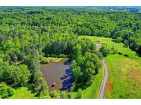 Property for sale at 4140 Ellison Farm Road, Braselton,  Georgia 30517