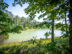 Property for sale at 1030 BIG WATER POINT, Greensboro,  GA 30642
