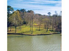 Property for sale at 1030 TURKEY TROT, Greensboro,  Georgia 30642