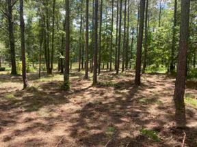 Property for sale at 1030 DOVE CANYON DRIVE, Greensboro,  Georgia 30642